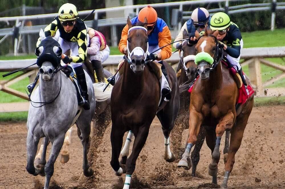 Best Horse Races